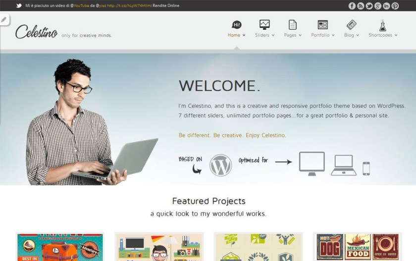 Celestino Free Portfolio WordPress Theme
