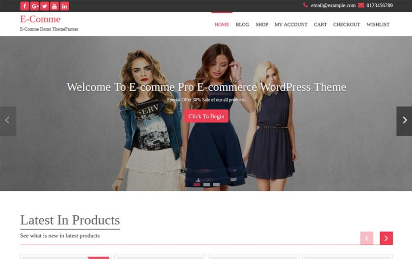 E-Comme Responsive WordPress Theme