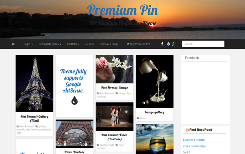 PR Pin Free Portfolio WordPress Theme