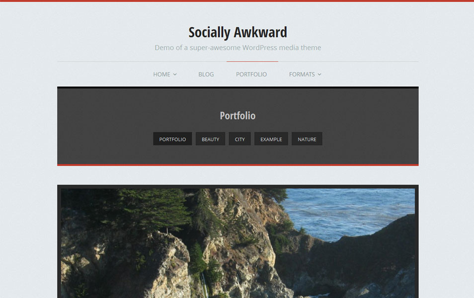 Socially Awkward Free Portfolio WordPress Theme