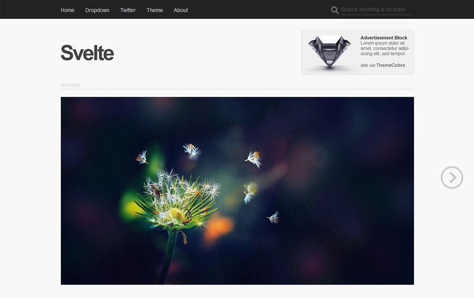 Svelte Free Portfolio WordPress Theme