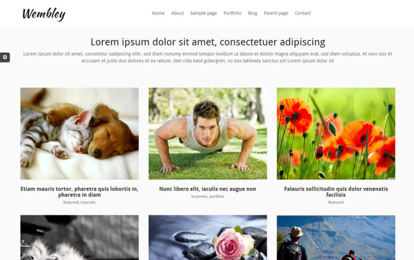 Wembley Free Portfolio WordPress Theme