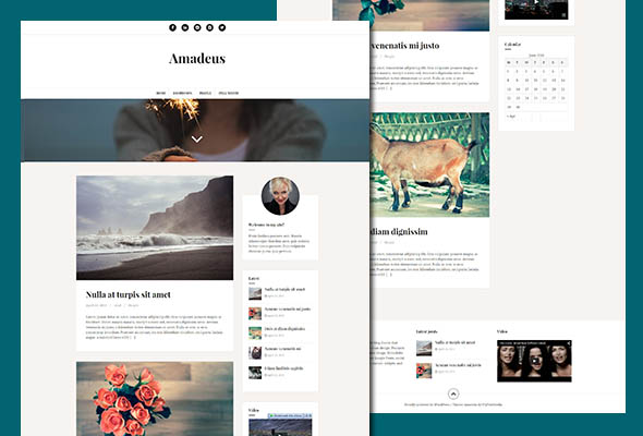 amadeus personal blogging theme