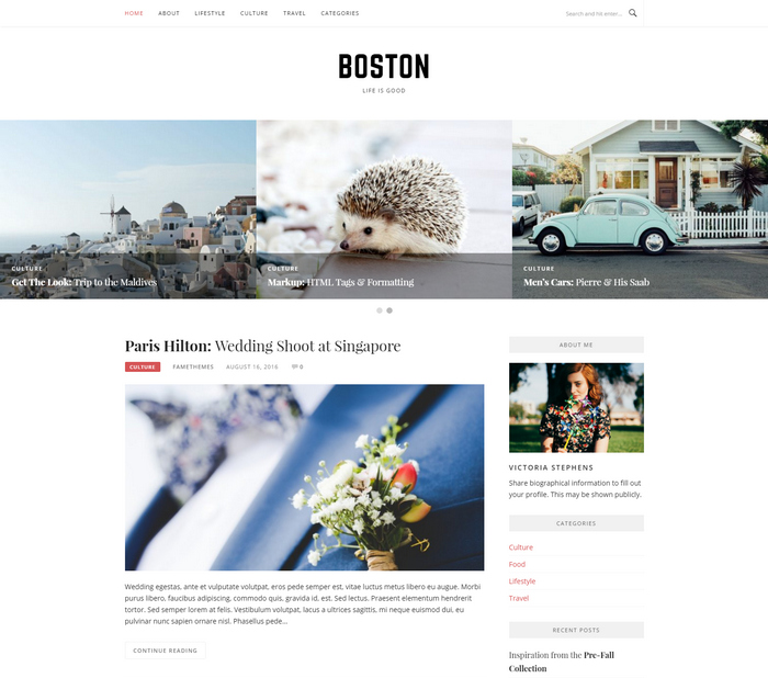 boston personal blog theme for wordpress cms
