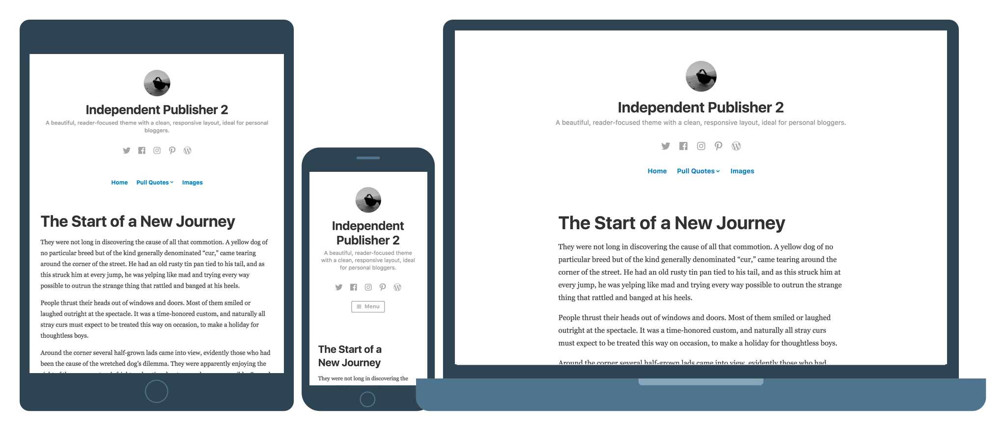free wp theme for bloggers