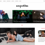 Magnetism minimalist blogging wp theme