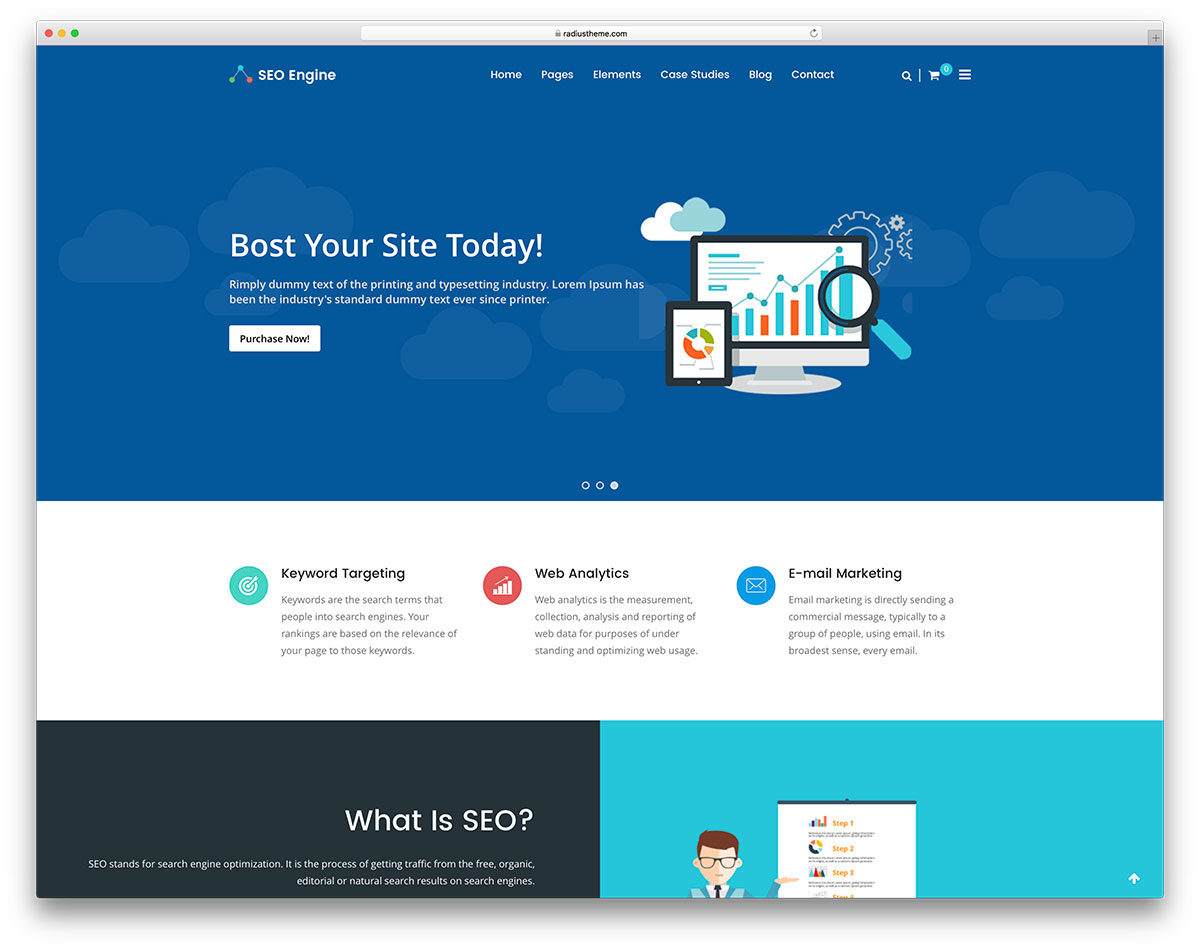 Top 15 Seo Optimized Wordpress Theme For Seo Company Marketing