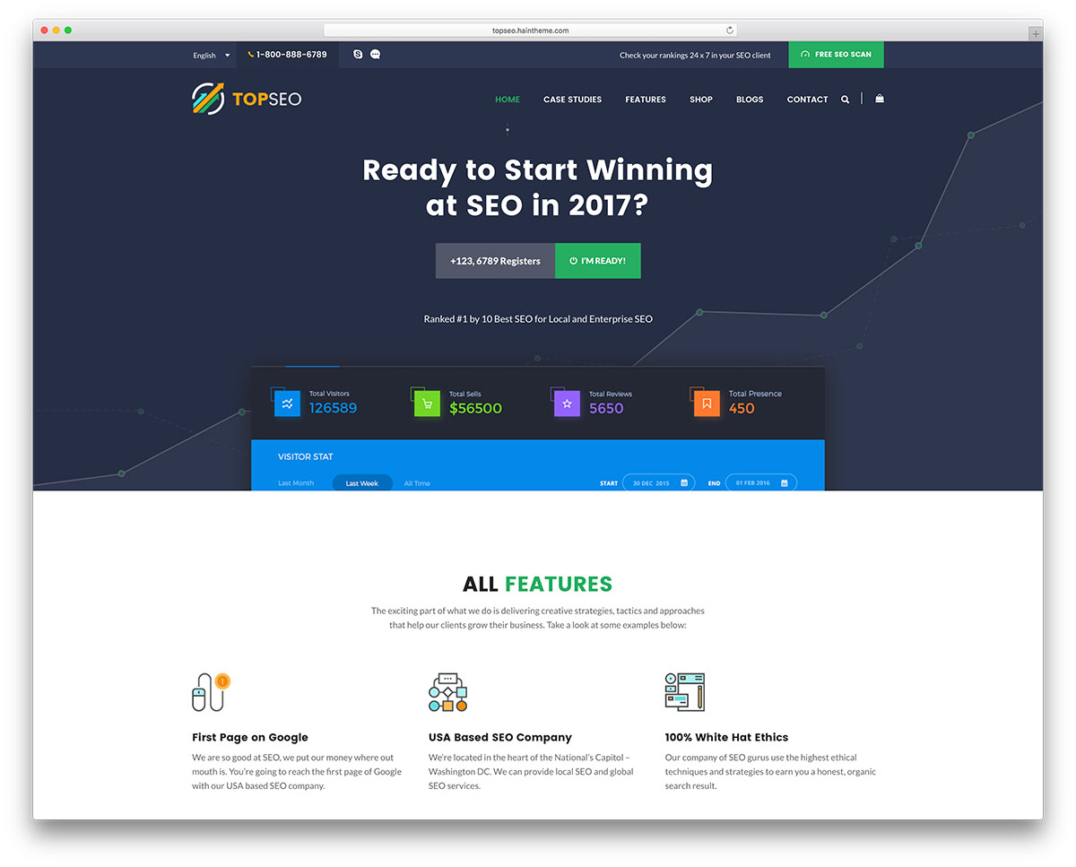 Competent And Business Savvy Engaging Fresh Faced Youthful Feature Rich Highly Responsive WordPress SEO Digital Marketing Website Theme