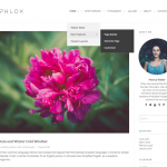 Phlox Free Blogging Portfolio Wp Theme
