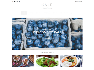 Kale Wordpress theme screenshot