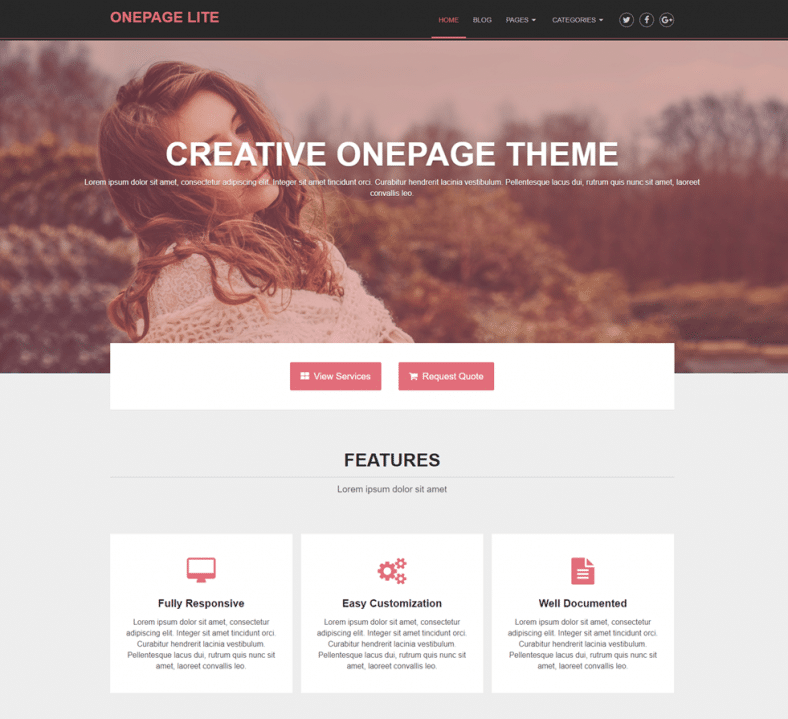 OnePage Lite - Free SEO-Optimized Onpage business Wordpress theme ...