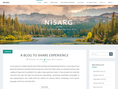 Nisarg Wordpress theme screenshot