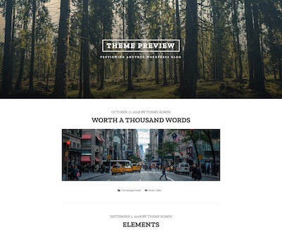 Tasman Wordpress theme screenshot