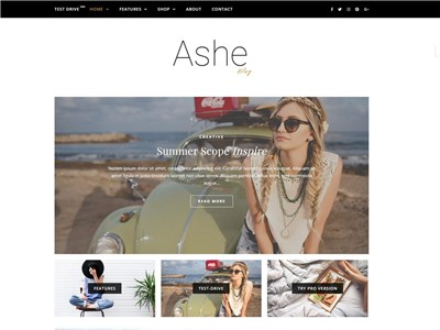 Ashe Wordpress theme screenshot