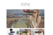 Ashe Wp Theme