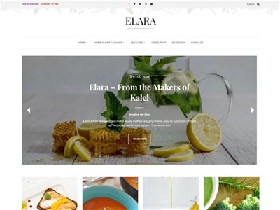 Elara Wordpress theme screenshot