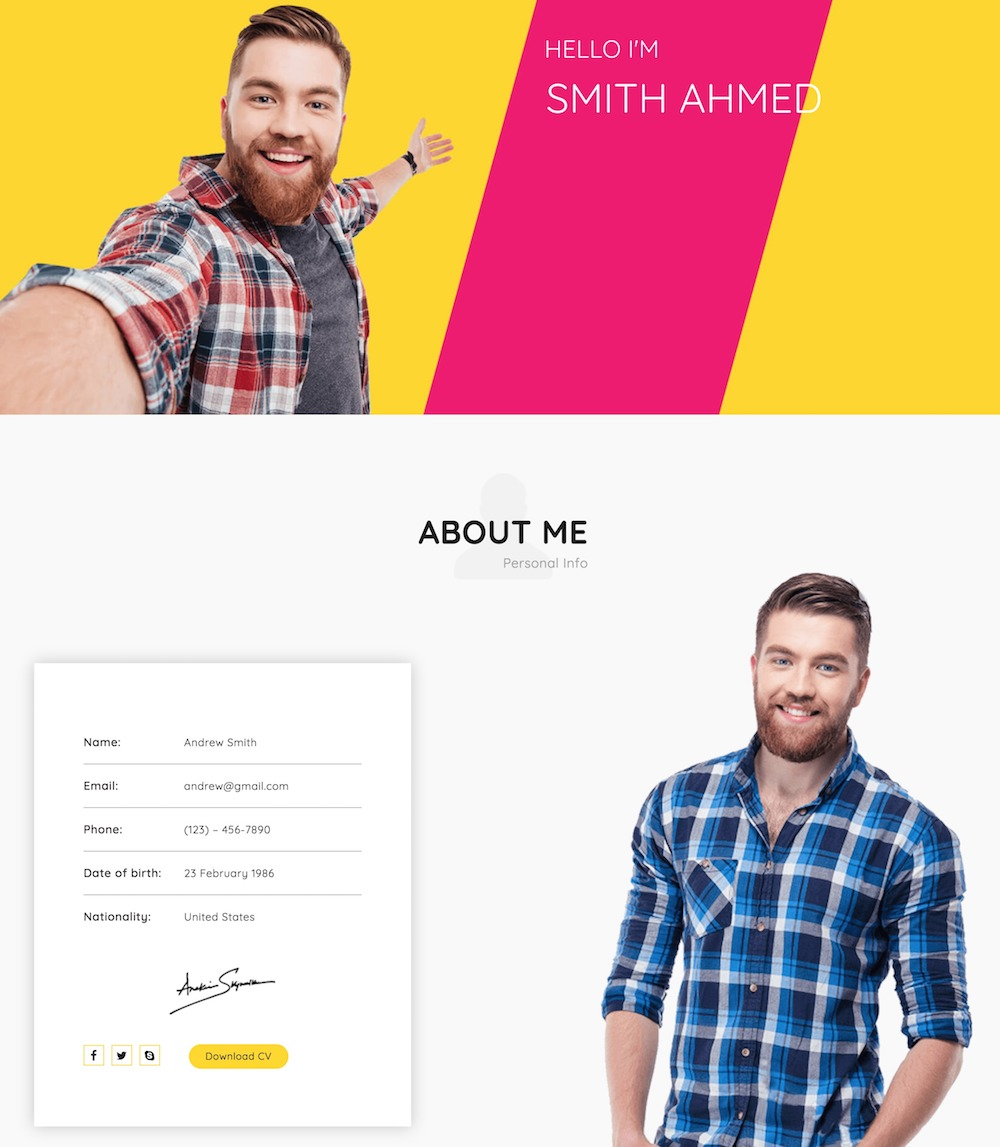 monty - free resume wordpress theme