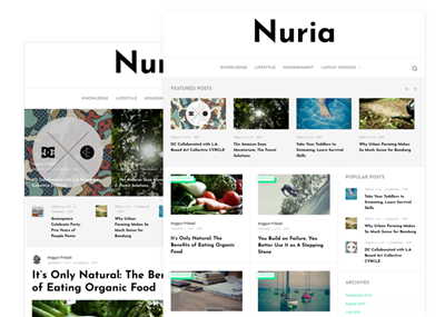 Nuria Wordpress theme screenshot