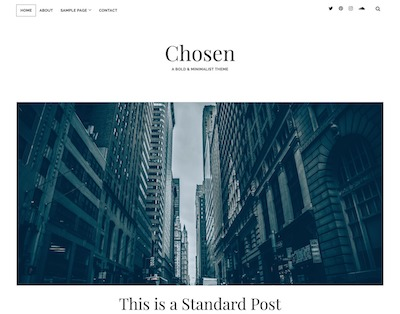 Chosen Wordpress theme screenshot