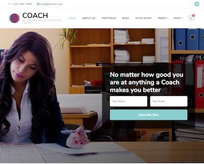 Blossom-Coach Wordpress theme screenshot