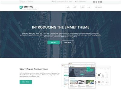 Emmet-Lite Wordpress theme screenshot