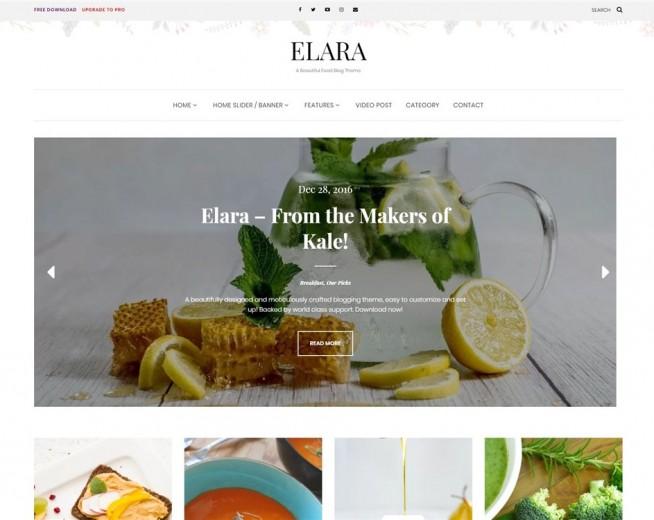 Elara – Free Food blog WordPress theme