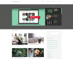 TheMotion Lite – Minimalist, clean and simple video blog WordPress theme
