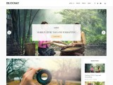 Bloomy – Free Responsive WordPress blog theme