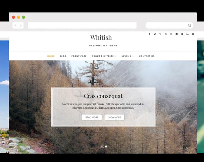 WHITISH LITE – Free Elegant and minimalist WordPress theme