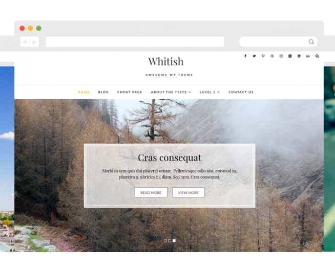 WHITISH LITE – Free Elegant and minimalist WordPress theme