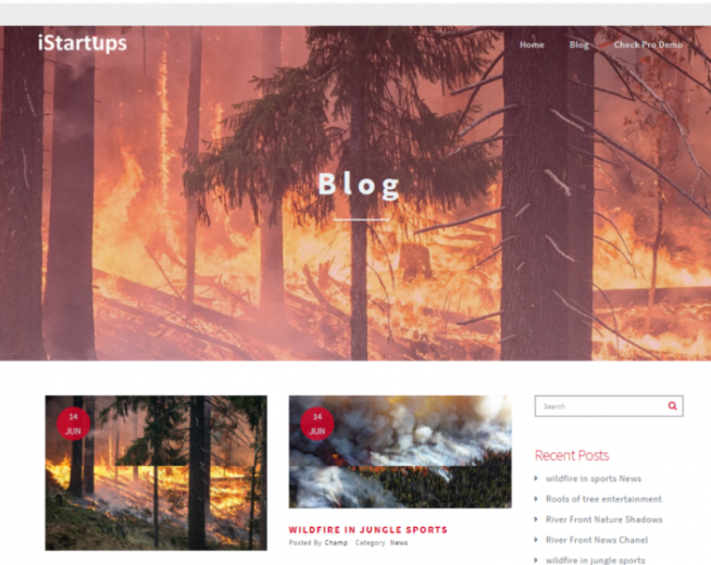 iStartups – Free, professional WordPress theme for Startup blogs