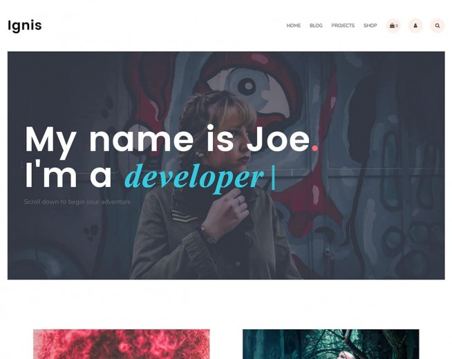 Top 20 free portfolio WordPress themes for Photographers, designers