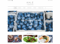 Kale – Free clean & SEO Optimized WordPress food blogging theme
