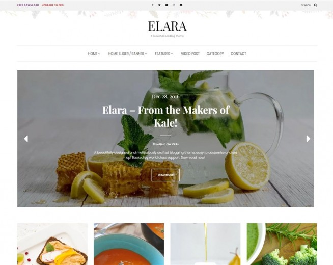Elara – Free Food blog WordPress theme