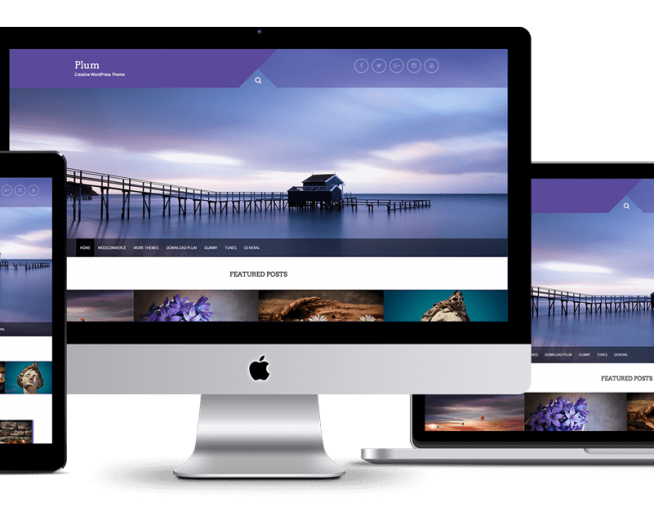 Plum – Free Multipurpose WordPress theme with Woocommerce compatibility