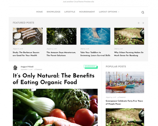 Nuria – Free minimalist, clean WordPress blogging theme